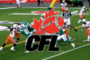 2017 Canadian Football League Preview...