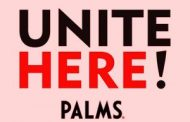 Culinary Workers Hold Nationwide Pickets to Support Palms Casino ...